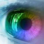 Kako je zelena postala zelena – osnovna teorija boja